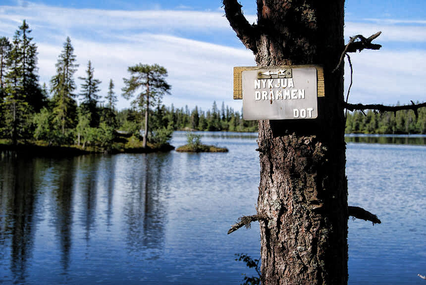 Skogsområdet Finnemarka